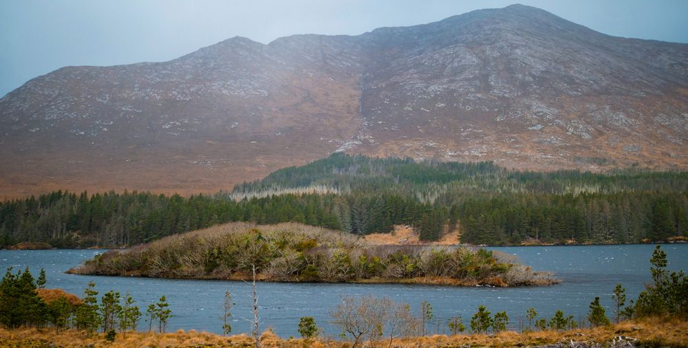 El Parque Natural de Connemara con su vegetación seca